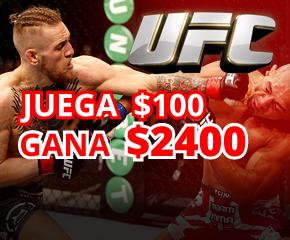 MMA UFC 256